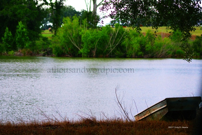 WATERMARKED Boat and Pond posted