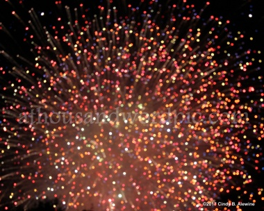 WATERMARKED FIREWORK 1 posted