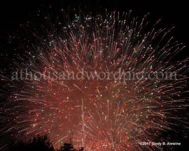 WATERMARKED FIREWORK 2 posted