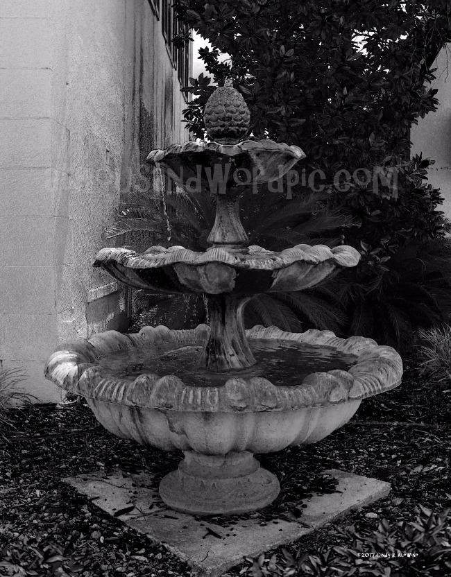 WATERMARKED FOUNTAIN posted