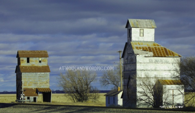 WATERMARKED KANSAS BARNS