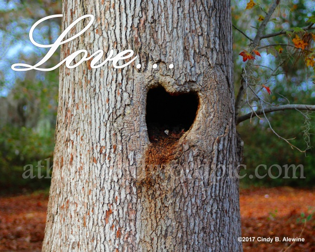 WATERMARKED LOVE TREE posted