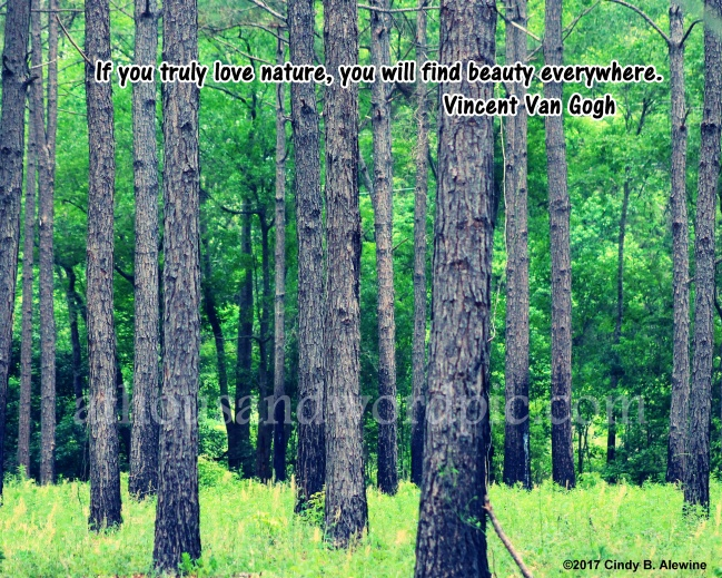 WATERMARKED NATURE 2 posted
