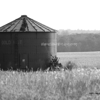 WATERMARKED SILO 2