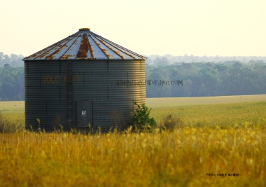 WATERMARKED SILO