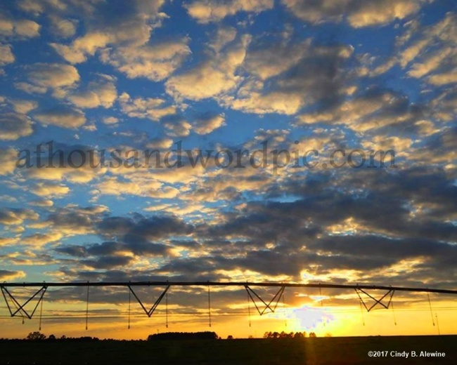 WATERMARKED SUNSET 2 posted