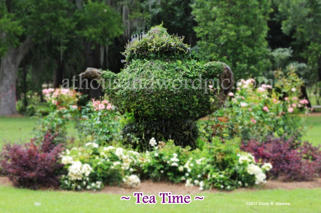 WATERMARKED TEAPOT posted.JPG