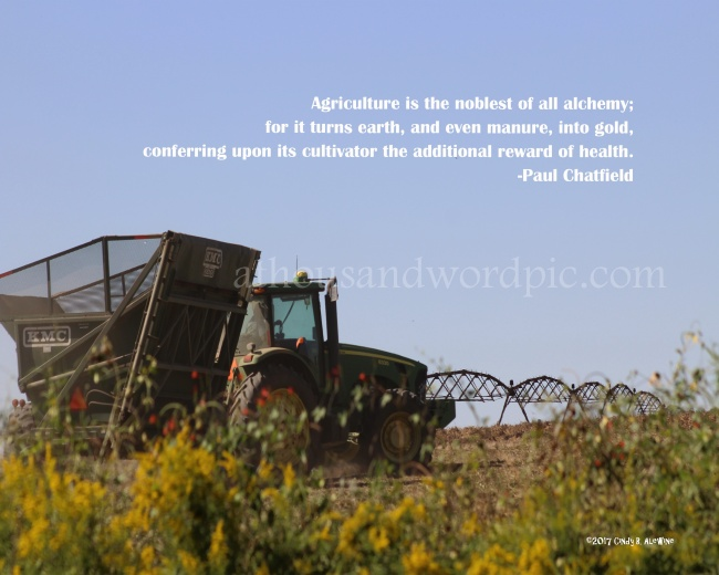 WATERMARKED tractor 1 10x8 adobe edited