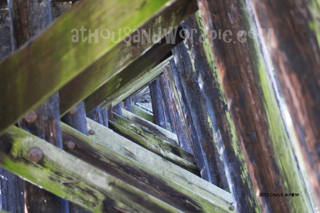 WATERMARKED Under the Rails posted