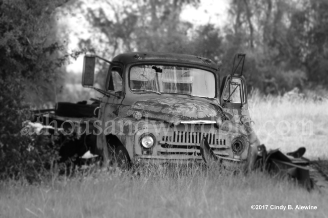 WATERMARKED VINTAGE TRUCK posted