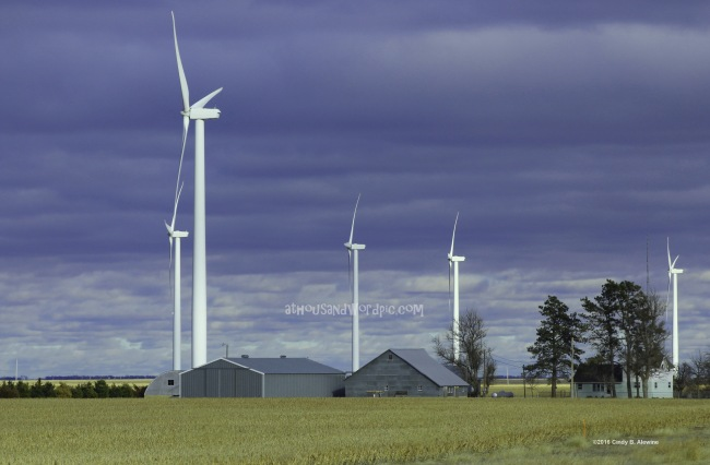 WATERMARKED WIND TURBINES 1